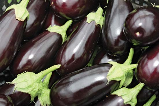 Eggplants - foodies hubb